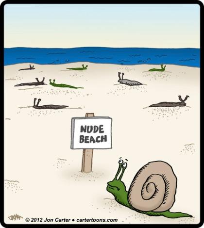 snail_nude_beach